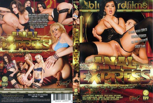 Anal Express Bluebird Films Porn Dvd