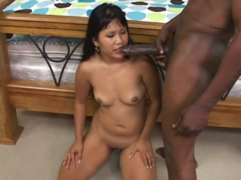 Asian Tube Love Hot Asian Tube Sex Free Interracial 1