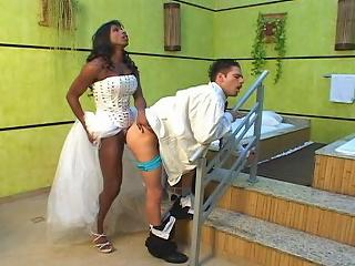 Ebony Shemale Bride Shoving Her Gargantuan Dick In The Ass Of Hot