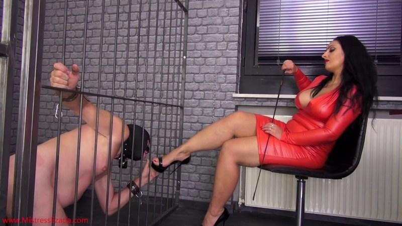 Ezada Feet Mistress Ezada Foot Worship Mistress Ezada Foot Worship Mistress Ezada