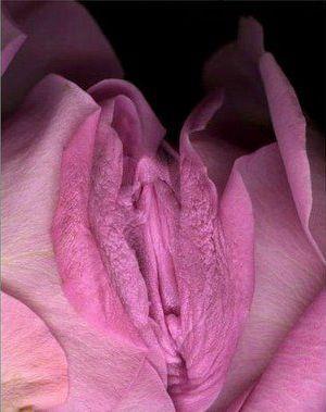 Female Ejaculation The Nectar Of The Goddess The Goddess 1