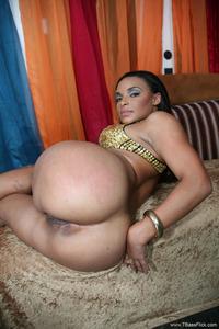 porn top star