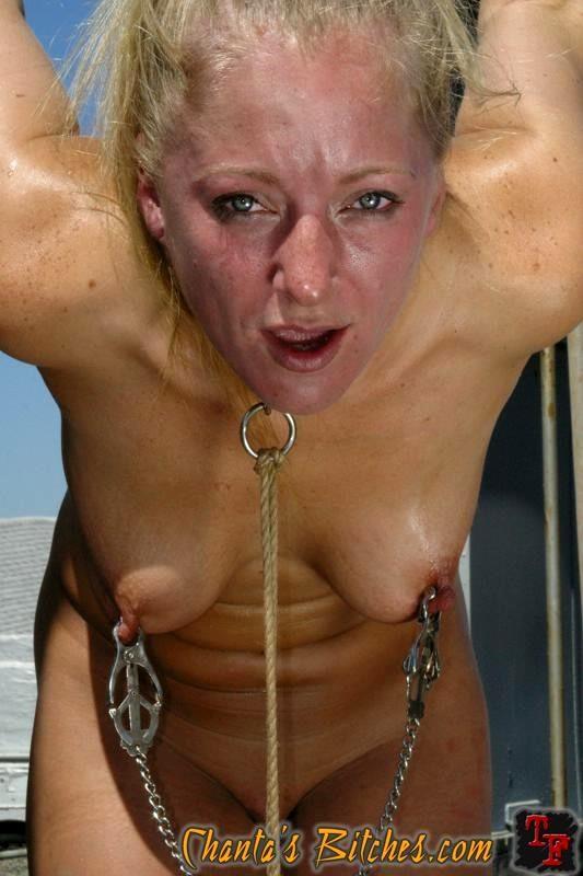 This Porn Producer Nika Noire Dia Zerva Price Lesbians Dancingbear Jpg