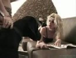 Videos De Zoofilia Gratis Sexo Con Animales Porno Gratis